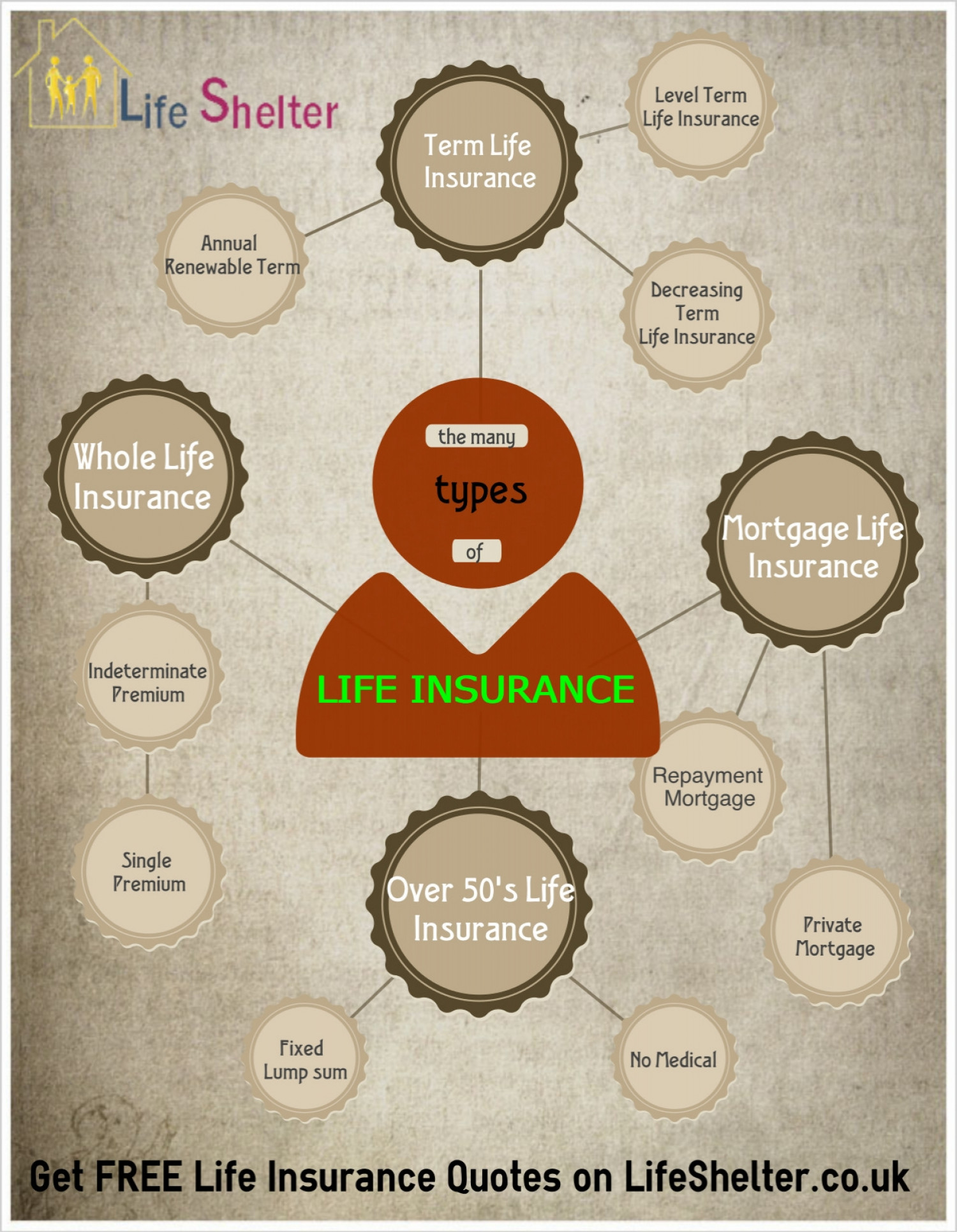 Life Insurance - Different Types Of Life Insurance Infographic