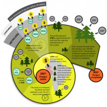 Life of a carbon credit Infographic