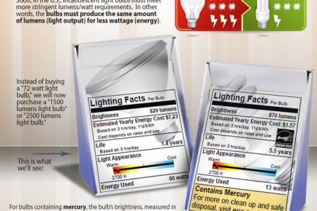 Light bulbs Infographic