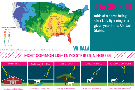 Lightning Strikes In Horse Pastures Infographic