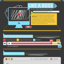 Like a Are U.S. Execs Embracing Online Video?  Infographic