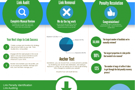 Link Penalty Resolution Services Infographic