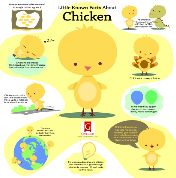 Little Known Facts About Chicken