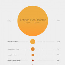 London Riot Statistics Infographic