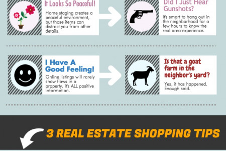 Looking at Homes Online VS In Person Infographic