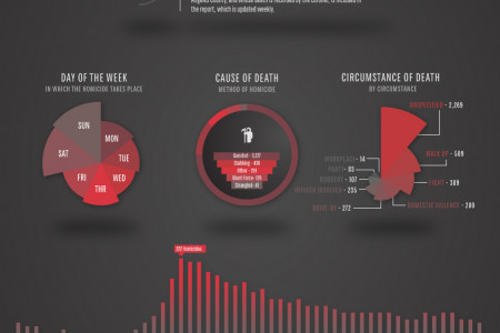 Los Angeles Homicide Report Infographic