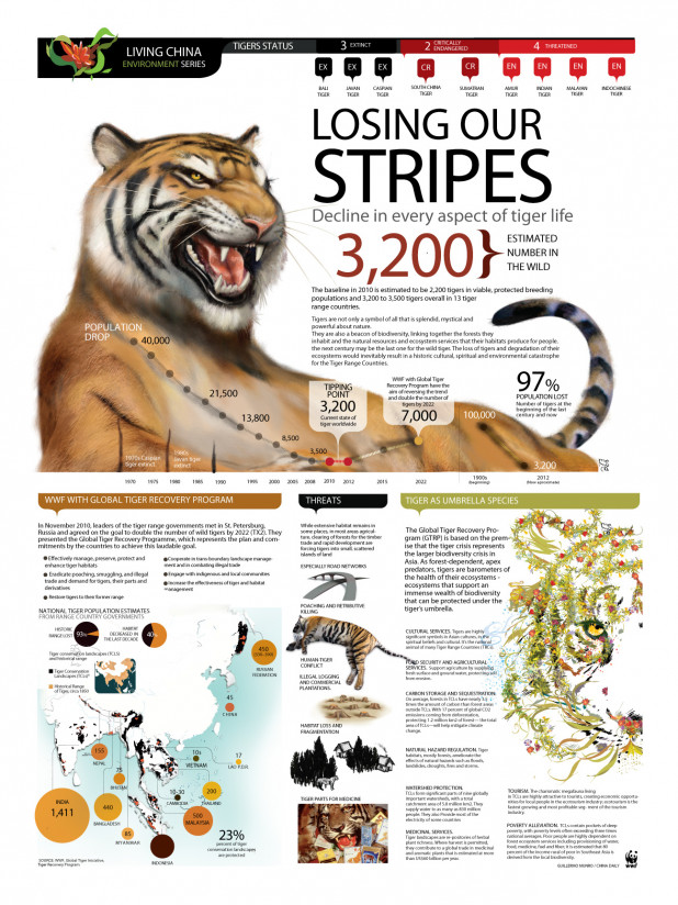 Losing Our Stripes: World Tiger Status