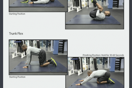 Lower Back Stretches Infographic