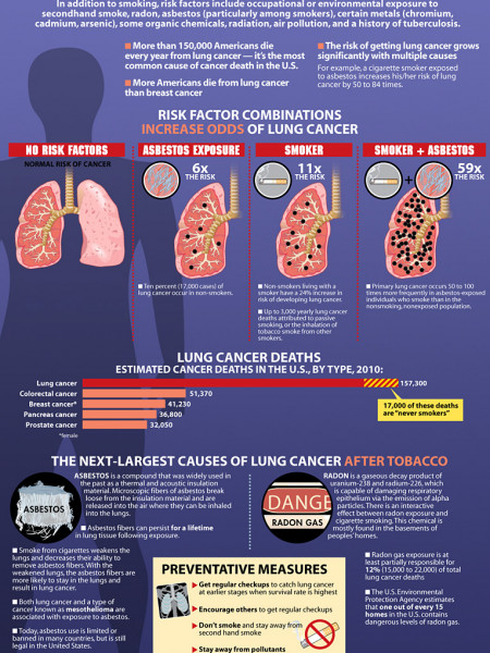 Lung Cancer Risk Factors Infographic