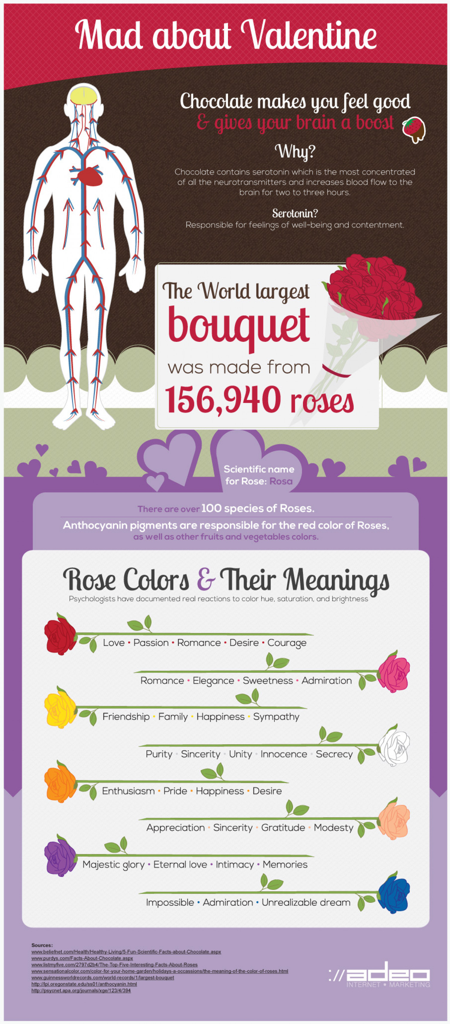 Mad about Valentine Infographic