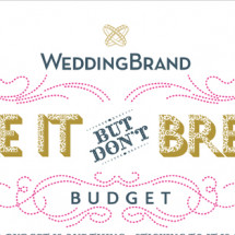 Make It But Don't Break It Wedding Budget Infographic
