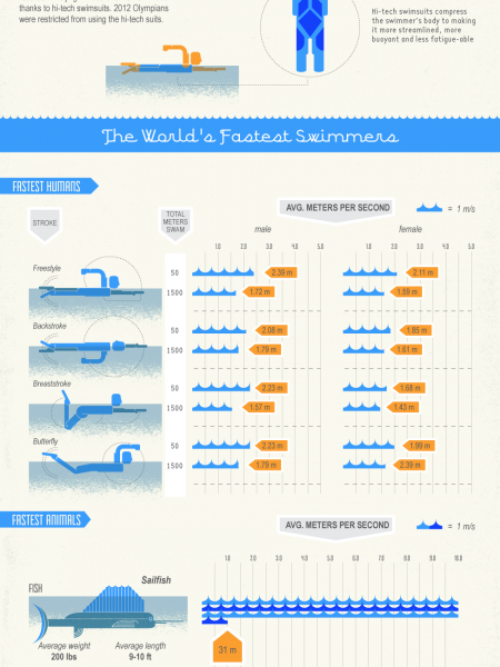 Making a Splash: Fast and Fascinating Water Facts Infographic