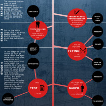 Making Sense of Dreams Infographic