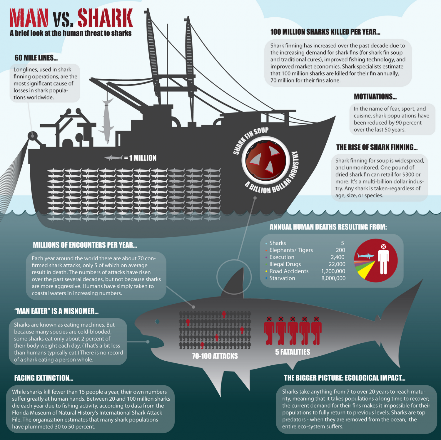 Man vs. Shark Infographic