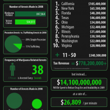 Marijuana and the Government Infographic