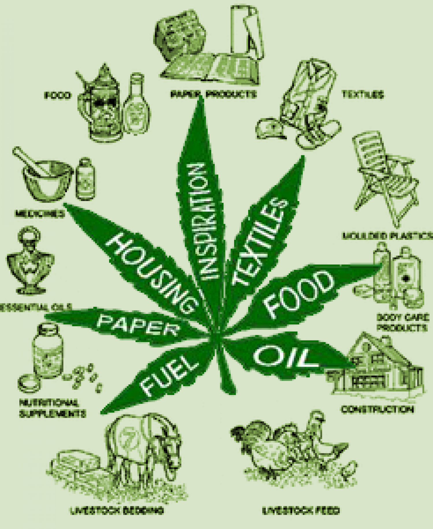 Marijuana Uses Infographic