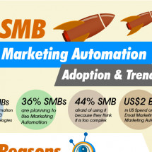 Marketing Automation Infographic