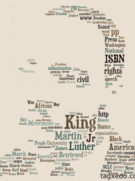 Martin Luther King Jr.  Infographic