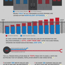 Mass Incarcertation Infographic