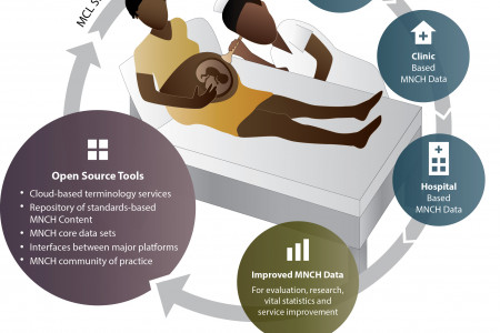 Maternal Concept Lab:  Creating a Common Language for Electronic Maternal, Newborn and Child Health Data Infographic