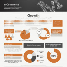 mCommerce Overview Infographic