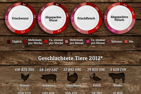 Meat Consumption in Germany Infographic