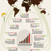 Medical Tourism Map: Where Patients Go to Save Infographic