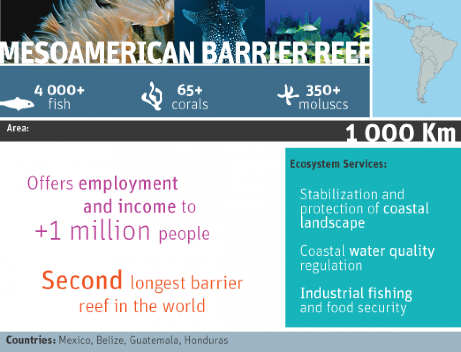 Mesoamerican barrier reef Infographic