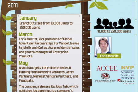 Meteoric Rise of Branchout Facebook App Infographic
