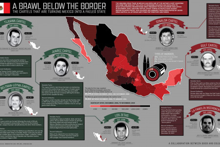 Mexican Cartels Infographic