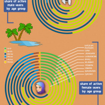 Middle East Facebook Demographics Infographic