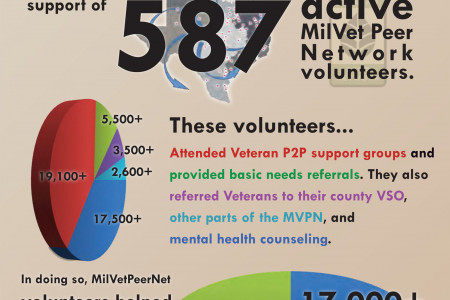 Military Veteran Peer Network 2013 Infographic