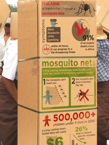 Mosquito Nets Infographic