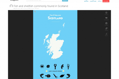 Most common fish & and shellfish species in Scotland Infographic