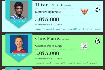 Most Expensive Cricket Players in IPL 2013 Infographic