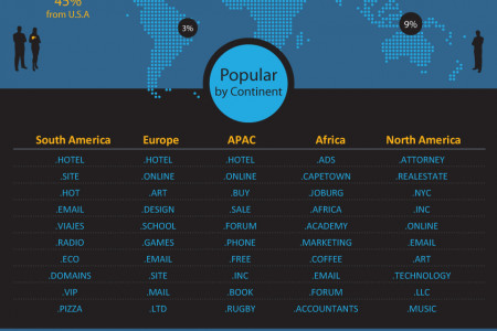 Most Popular New TLDs and Categories Infographic