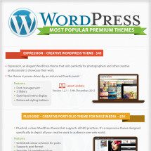 Most Popular WordPress Premium Themes (infographic)  Infographic