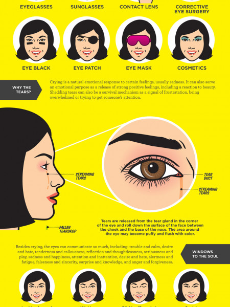 Mother Nature's Pop Science Guide to The Human Eye - Part Two Infographic