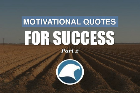 Motivational Quotes For Success: Part 2 Infographic