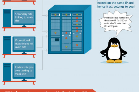 Multiple IP SEO Hosting safeguards against penguin and many other algorithm updates to come! Infographic