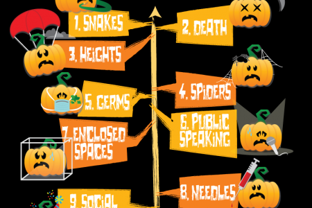 My biggest fears are... Infographic