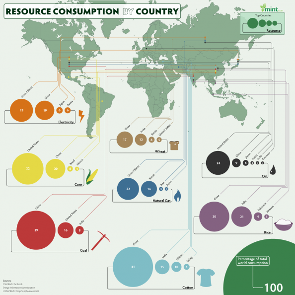 Natural Resource Consumption by Country Infographic