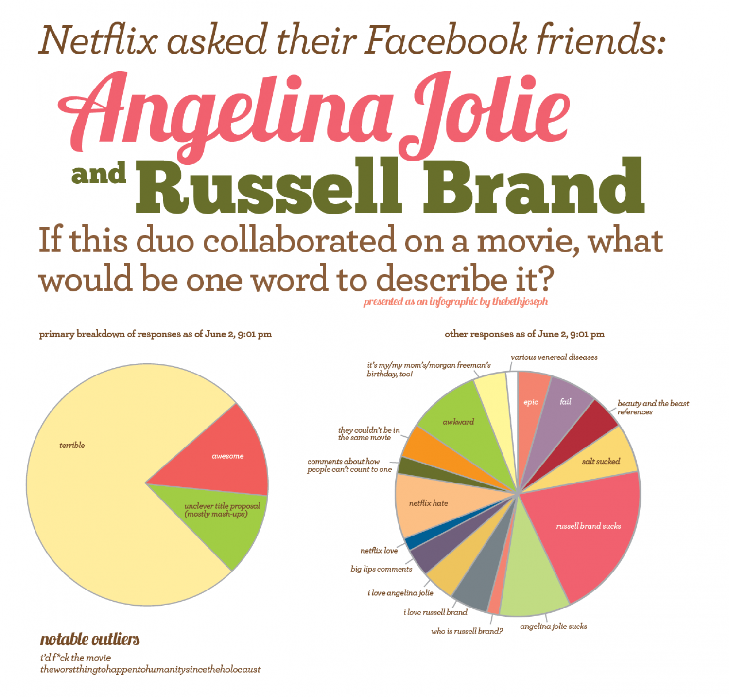 Netflix Survey  Infographic