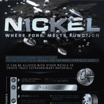 Nickel: Where Form Meets Function Infographic