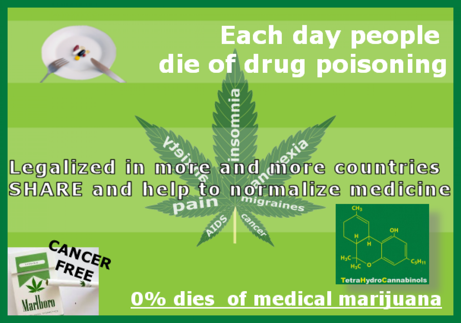 Each Day People Die Of Drug Poisoning Infographic