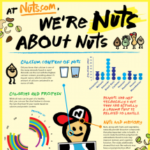 Nut Nutrition Facts Infographic