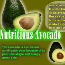 Nutritious Avocado Infographic