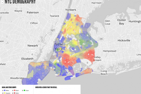 NYC Demography Infographic