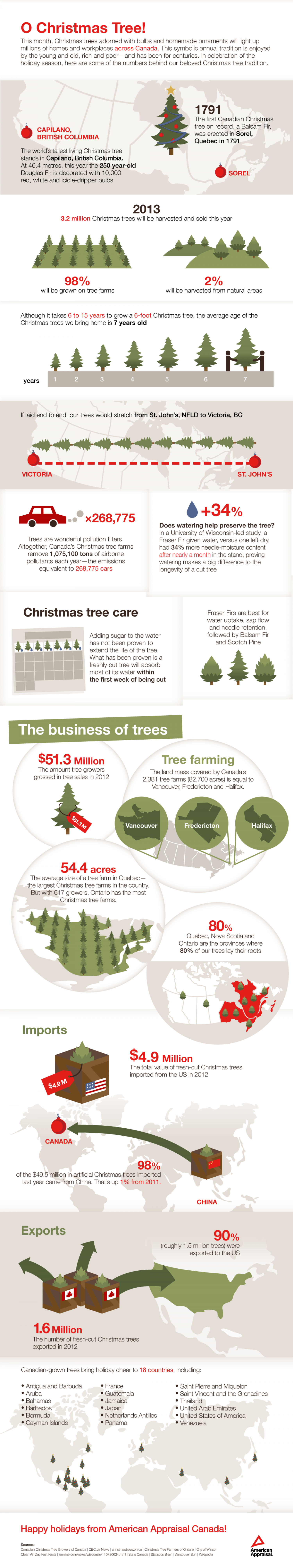 O Christmas Tree Infographic