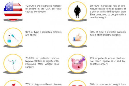Obesity Risk You Need To Know Infographic